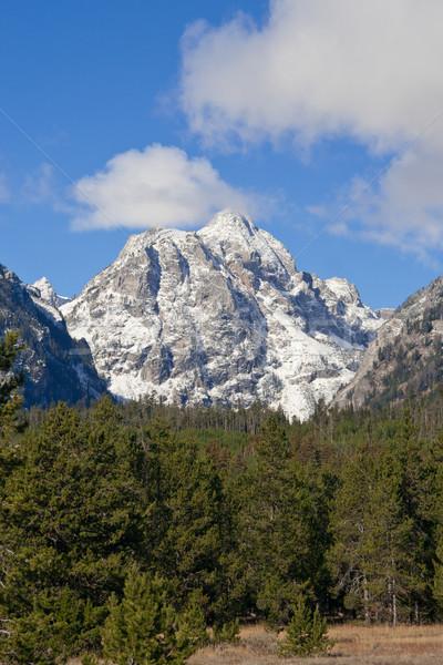 山 公園 ワイオミング州 米国 空 雲 ストックフォト © fisfra