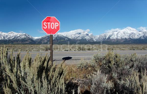 Panneau de signalisation arrêter montagnes parc Wyoming USA Photo stock © fisfra