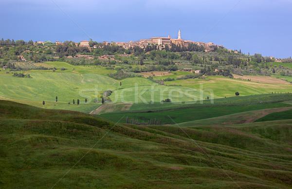 スカイライン 空 トスカーナ イタリア 家 草 ストックフォト © fisfra