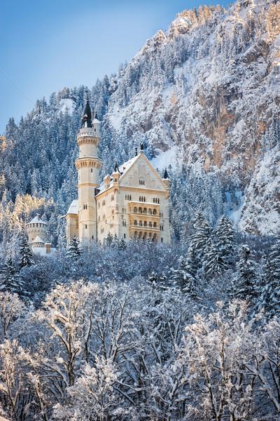 Neuschwanstein Castle in wintery landscape. Germany Stock photo © fisfra