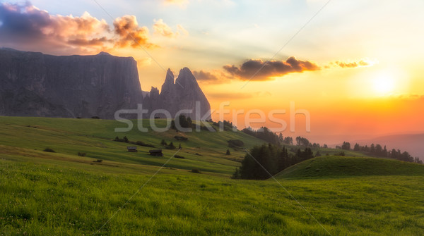 Schlern mountain with pasture at sunset, South Tyrol, Italy Stock photo © fisfra