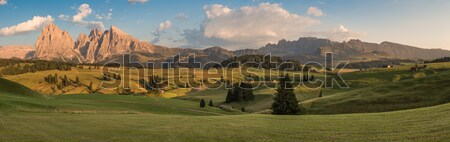 Panoramic View of Seiser Alm with Langkofel, South Tyrol, Italy Stock photo © fisfra