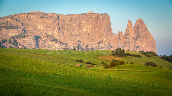 Schlern mountain in morning light, Seiser Alm, South Tyrol, Ital Stock photo © fisfra