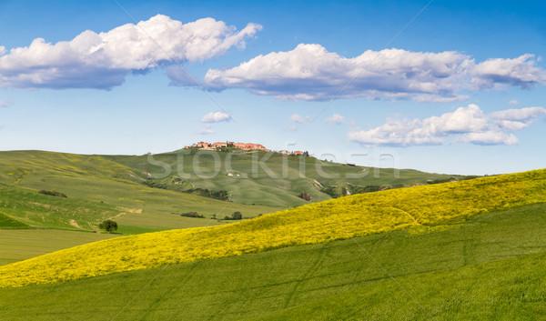 Tuscany landscape between Siena and Asciano, Crete Senesi, Italy Stock photo © fisfra