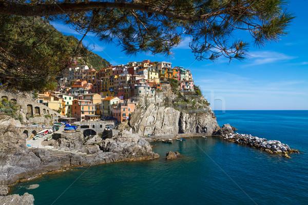 Village of Manarola, Cinque Terre, Italy Stock photo © fisfra