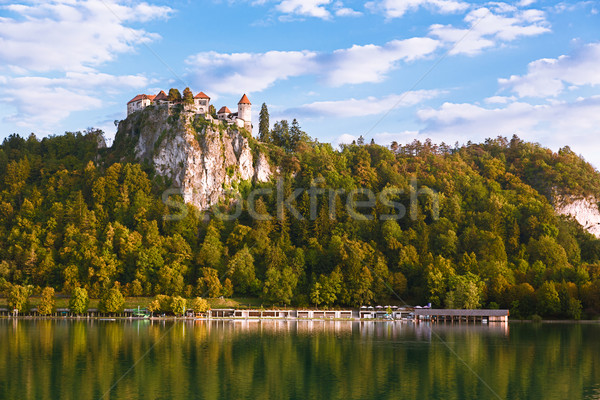 Bled Castle with Lake Bled, Slovenia Stock photo © fisfra