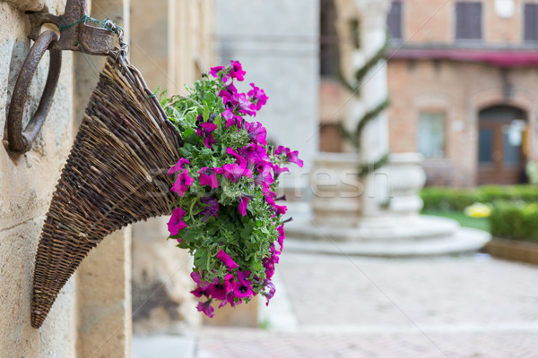 Flowers at Marketplace in Pienza, Tuscany Stock photo © fisfra