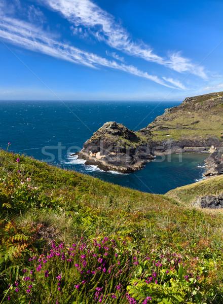 Coastline at Cornish coast near Boscastle, Cornwall, England Stock photo © fisfra
