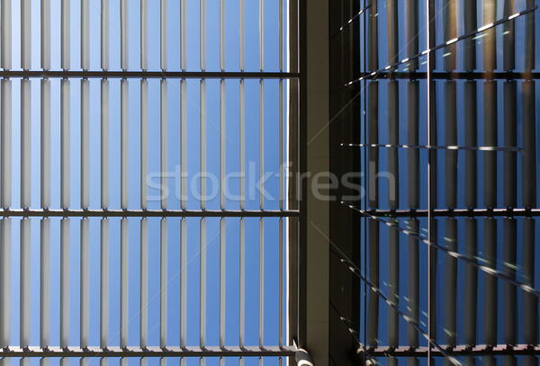 Symmetric roof made of steel and glass with lights and shadows Stock photo © fisfra