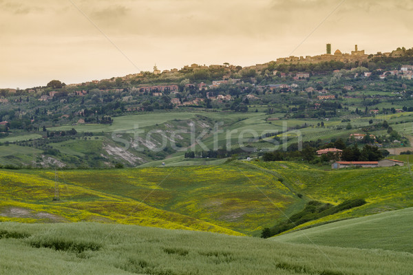 Tuscany landscape around Pienza, Val d'Orcia, Italy Stock photo © fisfra