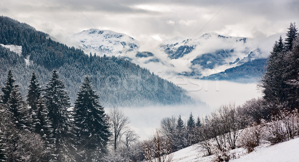 Zillertal at a winter day, Tyrol, Austrian Alps Stock photo © fisfra