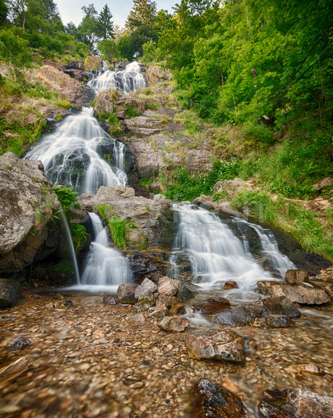 Todtnauer Waterfalls, Black Forest, Germany Stock photo © fisfra