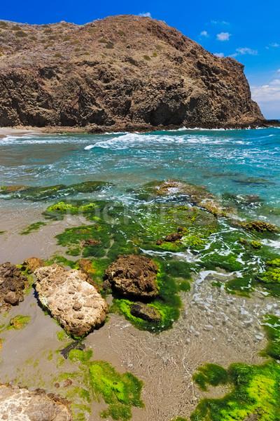 Coastline at Cabo del Gata, Almeria, Spain Stock photo © fisfra