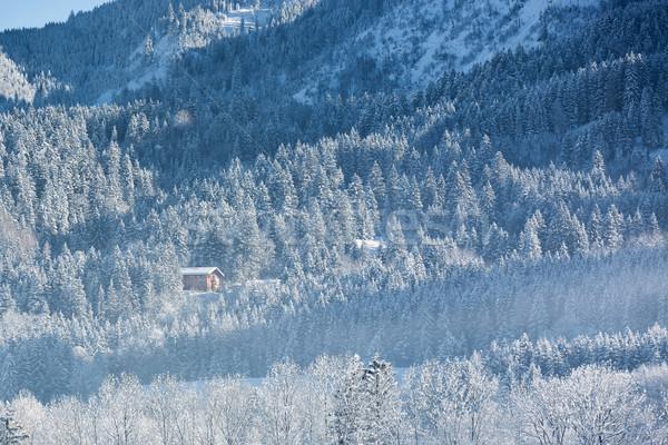 Alpejski chata lasu Niemcy krajobraz Zdjęcia stock © fisfra
