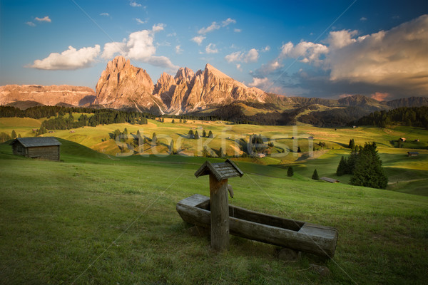 Seiser Alm with Langkofel Group before sunset, South Tyrol, Ital Stock photo © fisfra