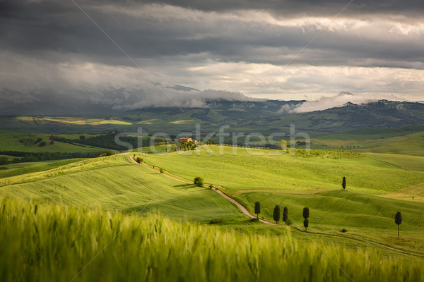 Stock photo: Tuscany landscape with farm near Pienza, Italy