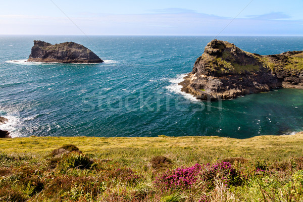 Coastline at Cornish coast near Boscastle, Cornwall, England Stock photo © fisfra