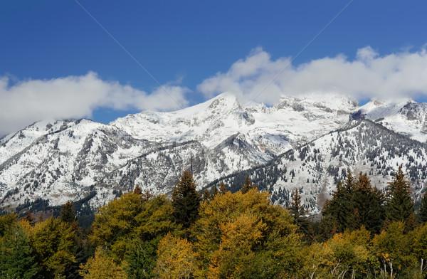 Montanas parque Wyoming EUA nieve verde Foto stock © fisfra