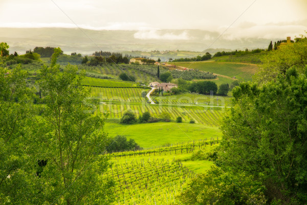 Tuscany landscape near San Gimignano, Italy Stock photo © fisfra