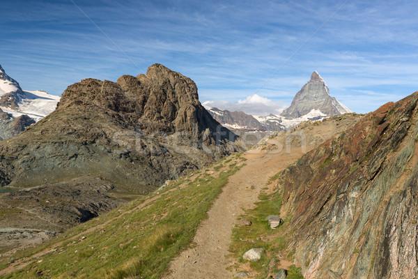 Nyom Alpok Svájc természet hó zöld Stock fotó © fisfra