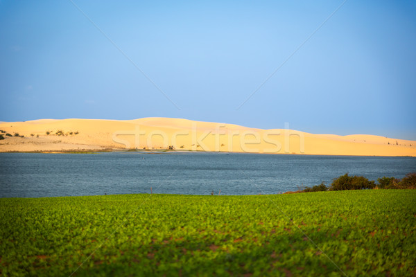Fehér homok kék tó Vietnam tájkép sivatag Stock fotó © fisfra