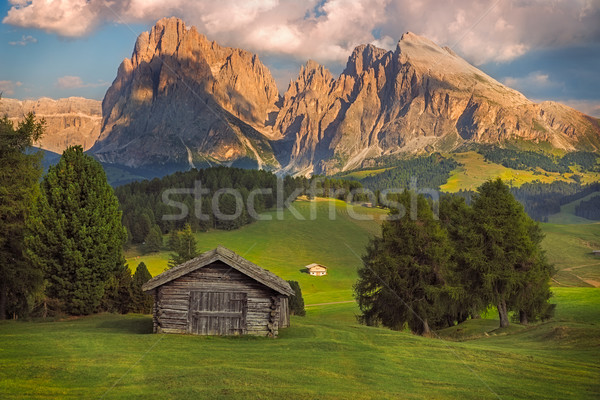 Seiser Alm with Langkofel group, South Tyrol, Dolomites, Italy Stock photo © fisfra