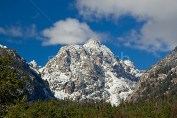 Snowcapped mountain at Grand Teton National Park, Wyoming, USA Stock photo © fisfra