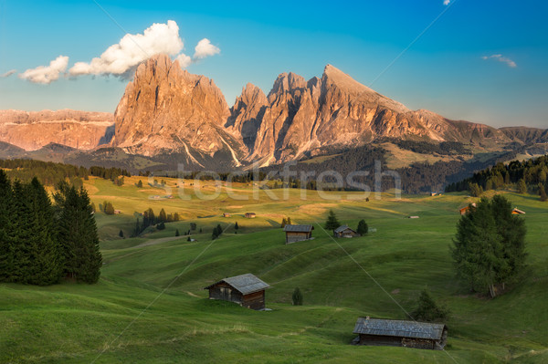 Seiser Alm with Langkofel Group in afternoon light, South Tyrol, Stock photo © fisfra