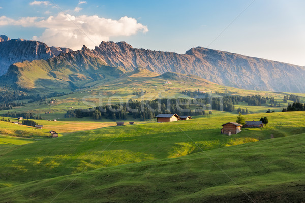 Seiser Alm in afternoon light, South Tyrol, Italy Stock photo © fisfra