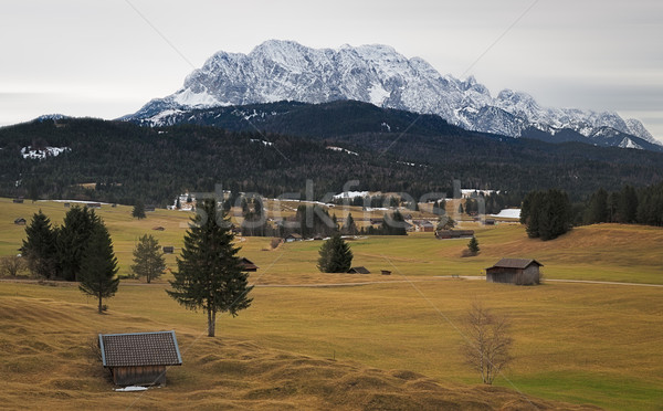 Alpine grassland with Karwendel Mountains, Alps, Germany Stock photo © fisfra