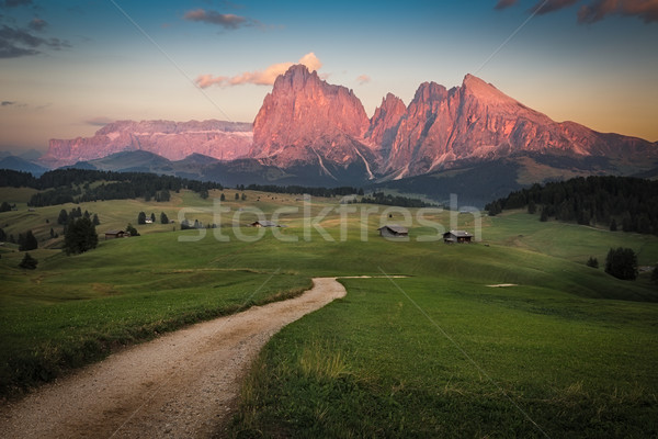 Seiser Alm with Langkofel Group after sunset, South Tyrol, Italy Stock photo © fisfra