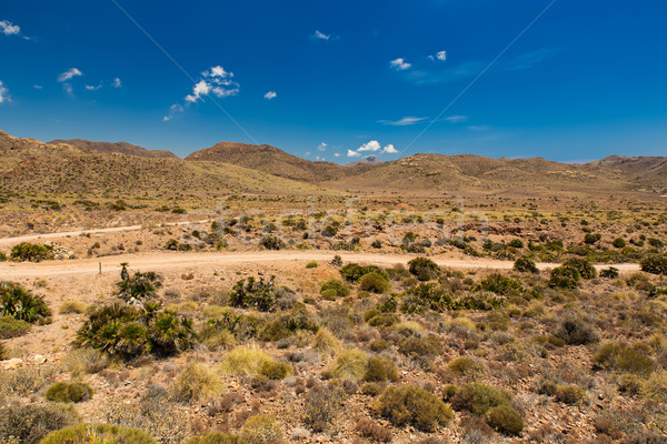 Dirt road in Cabo de Gata National Park, Andalusia, Spain Stock photo © fisfra