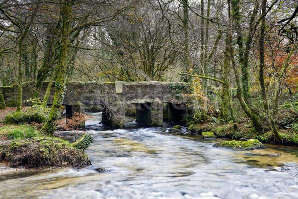 моста мысли первый крест реке край Сток-фото © flotsom