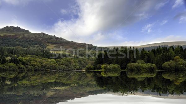 водохранилище парка воды облака лес пейзаж Сток-фото © flotsom
