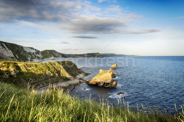 The Jurassic Coast in Dorset Stock photo © flotsom
