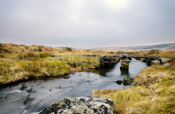 Winters Evening on Dartmoor Stock photo © flotsom