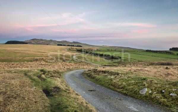 Bodmin Moor Stock photo © flotsom