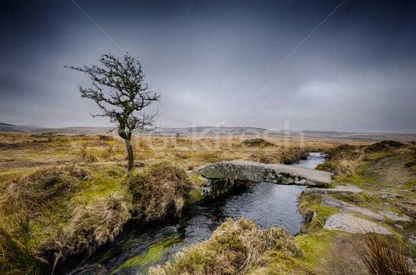 Hiver clam pont arbre pierre rivière Photo stock © flotsom