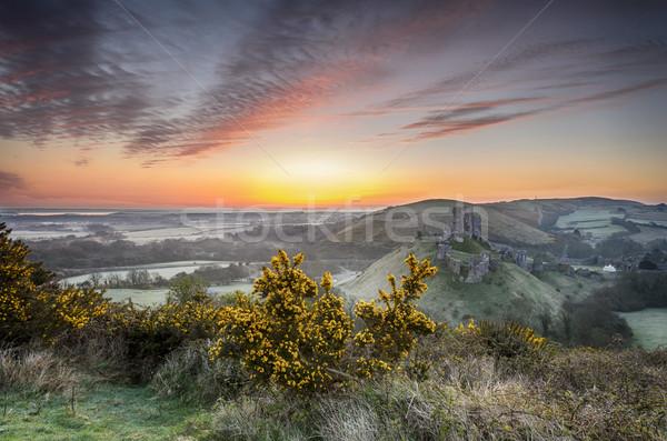 Sunrise at Corfe Castle Stock photo © flotsom