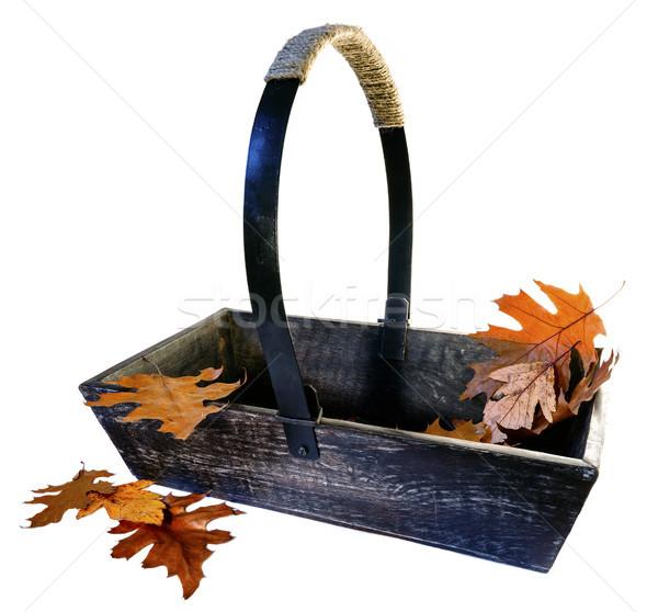 Garden Trug with Autumn Leaves Stock photo © flotsom