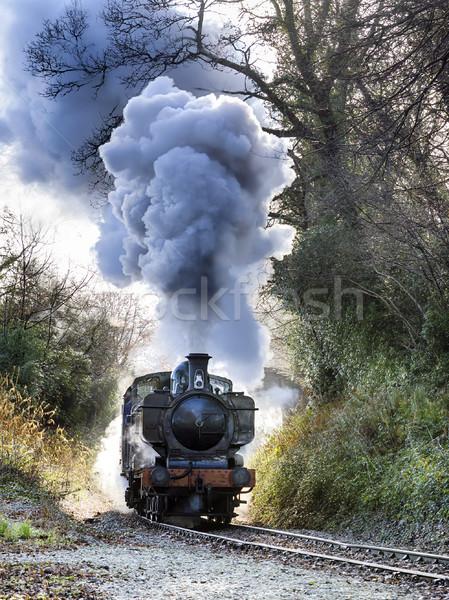 Stockfoto: Stoom · trein · hemel · rook · reizen · zwarte