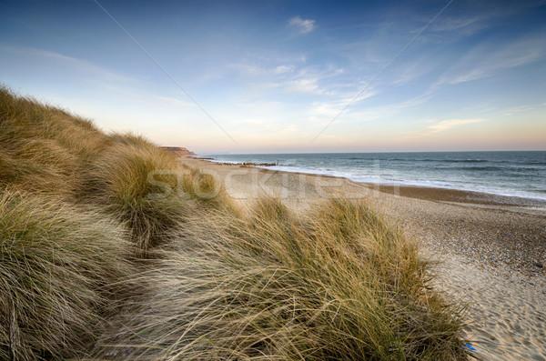 Sable tête plage de sable herbe soleil Angleterre Photo stock © flotsom