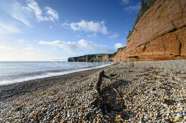 Ladram Bay in Devon Stock photo © flotsom