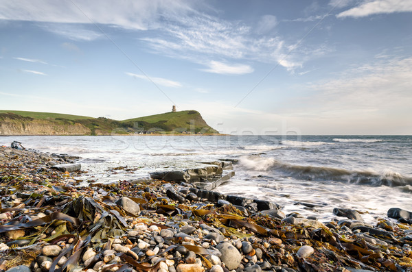 Kimmeridge Bay on the Jurassic Coast of Dorset Stock photo © flotsom