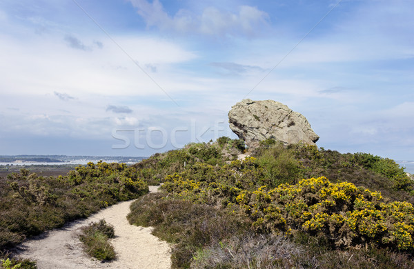 The Agglestone Rock on Godlingston Heath. Studland in Dorset, consisting of weathered Tertiary sands Stock photo © flotsom