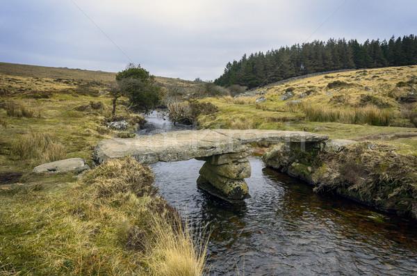 Walla Brook on Dartmoor Stock photo © flotsom