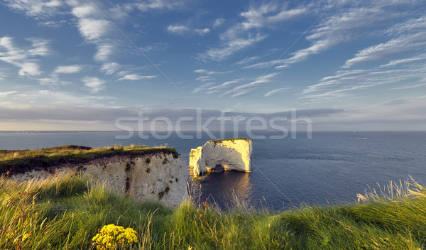 Old Harry Rocks Stock photo © flotsom