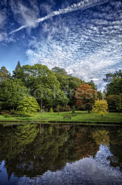 Tuinen meer park Engeland vijver Stockfoto © flotsom
