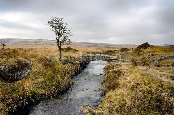 зима моста дерево каменные реке Сток-фото © flotsom