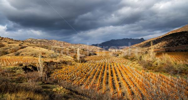 осень долины виноградник гор небе трава Сток-фото © fogen